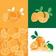 Orange, abstract background with oranges — Stock Vector