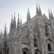 Milan cathedral dome in winter - Stock Photo