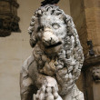 Lion of the Loggia of Lanzi, Florence — Stock Photo