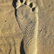 Foot print — Stock Photo