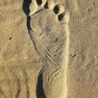 Stock Photo: Foot print