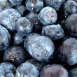 Stock Photo: Bilberry group