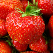Close up of strawberries — Stock Photo