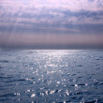 Sea decline 1 — Stock Photo