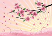 Blossom cherry-tree. — Stock Vector