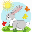 Stock Vector: Rabbit