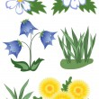 Stock Vector: Wild flowers