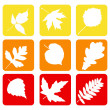 Set nature icons. — Stockvektor