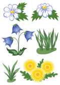 Wild flowers — Stock Vector