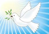 Flying dove. — Stock Vector