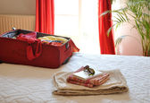 Red luggage — Stock Photo