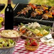 BBQ picnic — Stock Photo