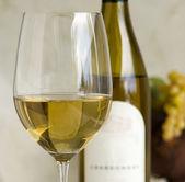 霞多丽葡萄酒 — 图库照片