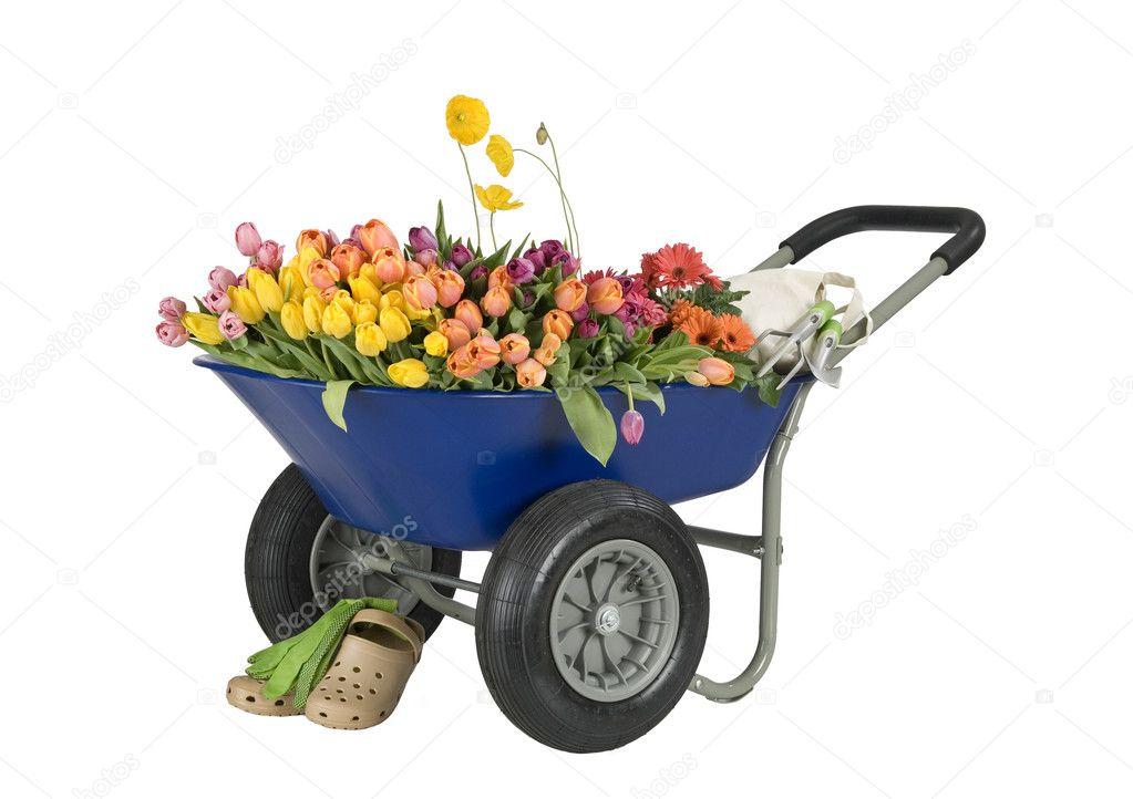 Садовая тачка для цветов