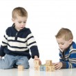 Young twin boys — Stock Photo