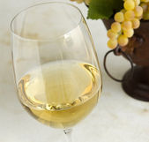 Chardonnay wine — Stock Photo
