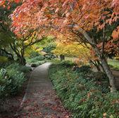 Japanse tuin — Stockfoto