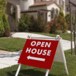 Stock Photo: Open house