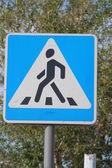 Traffic sign a pedestrian crossing — Stock Photo