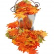 Colorful fall Leaves in ice bucket — Stok fotoğraf