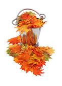 Colorful fall Leaves in ice bucket — Stock Photo
