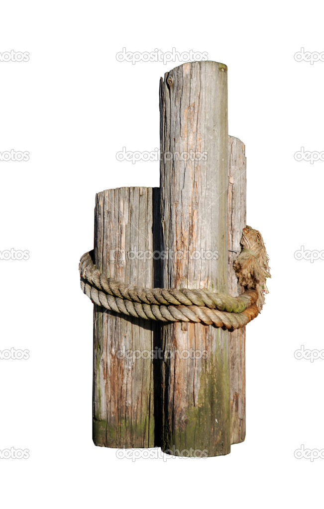 Decorative wood pilings with rope