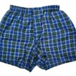 Постер, плакат: Blue Plaid Boxers