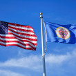 United States and Minnesota State Flags — Stock Photo