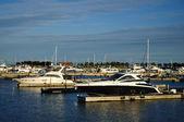 Cabin Cruisers Docked at Marina — Stock Photo
