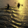 Man and Woman Kayaking at Sunset - Stockfoto