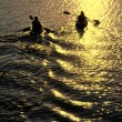 Man and Woman Kayaking at Sunset - 