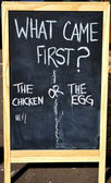 Which Came First Chicken or Egg? — Stock Photo