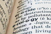 Ecology Defined — Stock Photo