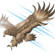 Stock Vector: Attacking eagle