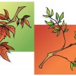 Summer and Autumn leaves — Stock Vector #2135579