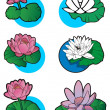 Stock Vector: Lotus flowers