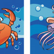 Marine life: crab and jellyfish — Stock Vector