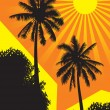 Stock Vector: Sunlit palm trees