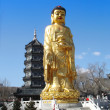 Golden statue of Buddha — Stock Photo