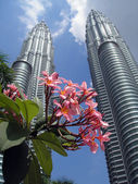 Petronas Twin Towers with flowers in the — Stock Photo