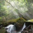 Stock Photo: Misty cascade
