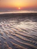 Sunset beach — Stock Photo