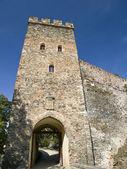 Bitov castle tower — Stock Photo