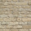 Brick wall texture — Stock Photo #2231881