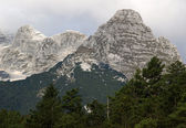 Julian Alps — Stock Photo