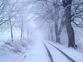 Wintry alley — Stock Photo