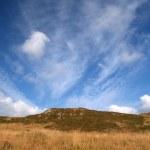 ������, ������: Irish bog landscape