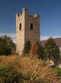 St. Audeon's church in Dublin — Stock Photo