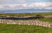 Typical Arran landscape with stone walls — Stock Photo