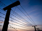 Barbed wire fence - Iron curtain — Stock Photo